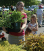 Tower Hill Plant Sale