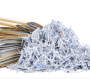 BBB to host Shred Day