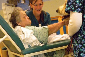 Jcaho Nursing Home Ratings