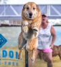 Dock Dogs Days 2017