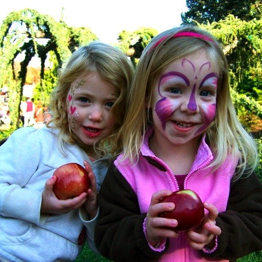 Best Apple Orchards Of Southern New England